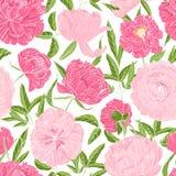 Modelo inconsútil romántico con las peonías florecientes magníficas en el fondo blanco Contexto natural con las flores del jardín libre illustration
