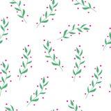 Modelo inconsútil simple lindo dibujado mano de las hierbas Fotos de archivo libres de regalías