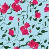 Modelo inconsútil torcido de las rosas del jardín Foto de archivo