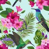 Modelo inconsútil tropical con el  de los colibríes, de HibisÑ nosotros flores y las hojas de palma Fondo floral con los pájaros ilustración del vector