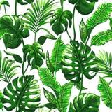Modelo inconsútil tropical con las hojas de palma libre illustration