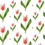 Modelo inconsútil Tulipán polivinílico bajo de la flor Fondo del vector Foto de archivo