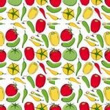 Modelo inconsútil vegetal Pepinos, tomates y pimientas aislados en el fondo blanco Imagen de archivo libre de regalías