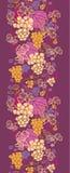 Modelo inconsútil vertical dulce de las vides de uva Foto de archivo