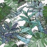 Modelo incons?til con follaje, ramas y hojas verdes stock de ilustración
