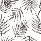 Modelo incons?til con las hojas tropicales en un fondo blanco ilustración del vector