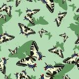 Modelo incons?til con las mariposas del machaon Imagen del vector Para el dise?o de tela, papel, muchos otros ilustración del vector