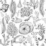 Modelo incons?til con los corales exhaustos de la mano marina falta y blanco libre illustration