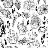 Modelo incons?til con los corales exhaustos de la mano marina Rebecca 36 ilustración del vector