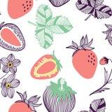 Modelo incons?til de fresas Fruta, hoja, rebanada, flor de la fresa Ejemplo exhausto de la mano del vector fijado en de moda mode libre illustration