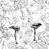 Modelo incons?til de la acuarela con las flores y los p?jaros tropicales del flamenco libre illustration