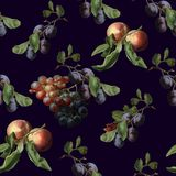 Modelo incons?til de la acuarela de la cosecha del oto?o con las frutas y las mariposas Grosella espinosa de la fresa del albaric ilustración del vector