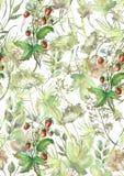 Modelo incons?til de la acuarela, fondo con un estampado de flores Dibujos hermosos del vintage de las plantas, flores, rama del  libre illustration