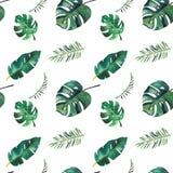 Modelo incons?til de la acuarela a mano Hojas tropicales verdes en el fondo blanco libre illustration
