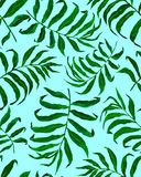 Modelo incons?til de las hojas de palma tropicales ilustración del vector