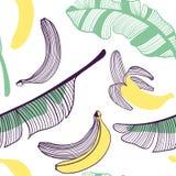 Modelo incons?til de pl?tanos Fruta, hoja del plátano Ejemplo exhausto de la mano del vector fijado en el estilo plano de moda mo libre illustration
