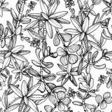 Modelo incons?til exhausto de la mano con los succulents de las plantas stock de ilustración
