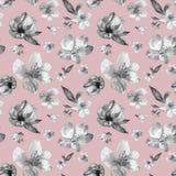 Modelo incons?til floral del resorte Flores delicadas de la flor de cerezo en estilo del vitange en fondo rosado polvoriento Gráf ilustración del vector