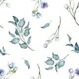 Modelo incons?til Plantas silvestres y flores de la acuarela Ramo Flores azules ilustración del vector