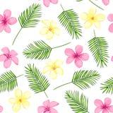 Modelo incons?til tropical con las hojas de palma y las flores Ilustraci?n del vector stock de ilustración
