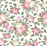 Modelo inconsútil con las rosas rosadas y blancas. Fotos de archivo