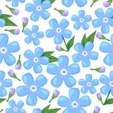Modelo inconsútil de la flor de la nomeolvides Imagen de archivo libre de regalías
