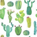 Modelo inconsútil del cactus de la acuarela Fotos de archivo libres de regalías