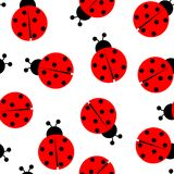 Modelo inconsútil del Ladybug Fotos de archivo libres de regalías