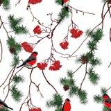 Modelo inconsútil del vector de la Navidad del bosque del invierno Fotografía de archivo