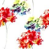 Modelo inconsútil del verano con las flores de la hortensia Fotografía de archivo