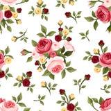 Modelo inconsútil del vintage con las rosas. Imagen de archivo libre de regalías