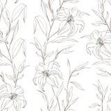 Modelo inconsútil floral con las flores apacibles del lirio. Imagen de archivo libre de regalías