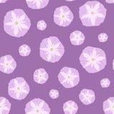 Modelo inconsútil simple con las flores rosadas del Ipomoea Imágenes de archivo libres de regalías