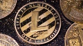 Modelo L con las rayas negras creadas como macro virtual de la moneda almacen de metraje de vídeo
