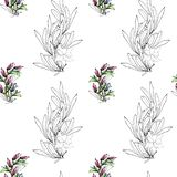 Modelo ligero de las ramas del contorno con las hojas y las flores Ornamento natural elegante en un fondo blanco Textura del vint libre illustration