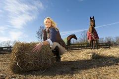 Modelo louro com cavalos Imagens de Stock