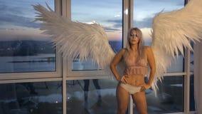 Modelo louro de Photosession com as asas brancas dentro do estúdio da foto video estoque