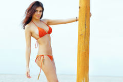 Modelo magnífico feliz en el traje de natación que se coloca en la playa imagen de archivo libre de regalías
