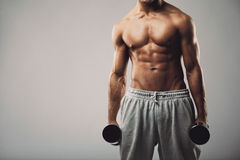 Modelo masculino de la aptitud con pesas de gimnasia en fondo gris Fotos de archivo libres de regalías