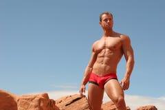 Modelo masculino do roupa interior fotografia de stock royalty free