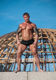 Modelo masculino Muscled Fotos de Stock