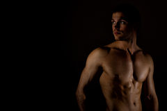 Modelo masculino muscular Imagen de archivo