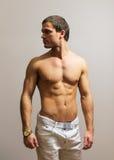 Modelo masculino muscular Imagem de Stock