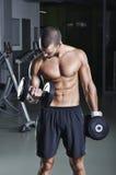 Modelo masculino muscular hermoso en una posición derecha que hace el bíceps Imágenes de archivo libres de regalías