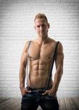 Modelo masculino seguro com um riso debochado Imagem de Stock Royalty Free
