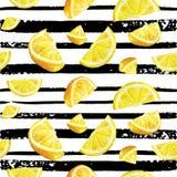 Modelo natural de la acuarela inconsútil de la fruta cítrica del limón Foto de archivo