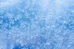 Modelo natural escarchado sobre el vidrio del invierno imagen de archivo libre de regalías