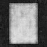 Modelo negro en blanco Foto de archivo libre de regalías