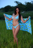 Modelo no biquini azul que está no campo do verão foto de stock royalty free
