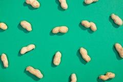 Modelo nuts de la endecha del plano del cacahuete Imágenes de archivo libres de regalías